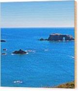 Panoramic California Coast Wood Print