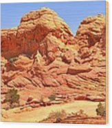 Panoramic Coyote Buttes Landscape Wood Print