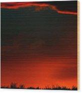 Panoramic Horse Sunset Wood Print