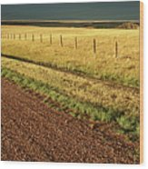 Panoramic Prairie Storm Canada At Sunset Wood Print
