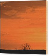 Panoramic Prairie Sunset Wood Print