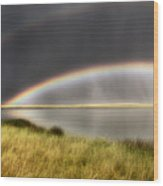 Panoramic Storm In The Marshes Wood Print