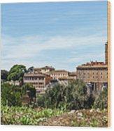 Panoramic View Of Rome Wood Print
