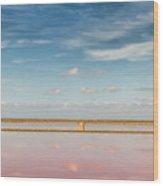 Panoramic View Of Saline Drip - Salin De Giraud Wood Print