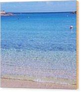 Panoramic Vision Of Devonshire  Bay, Bermuda Wood Print