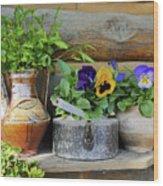 Pansies In Pots Wood Print