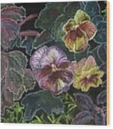 Pansy Wood Print