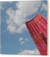 Pant Hanging On Washing Line Wood Print