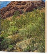 Papago Mountain Wood Print