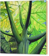 Papaya Tree Wood Print