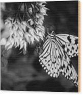 Paper Kite In Black And White Wood Print