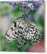 Paper Rice Butterfly Wood Print