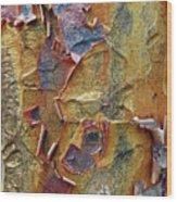 Paperbark Maple   Wood Print