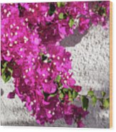 Papery Pink Riot Wood Print