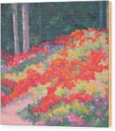 Parade Of The Poppies Wood Print