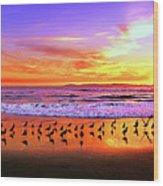 Paradise Found, Huntington Beach, California, Catalina Island Wood Print