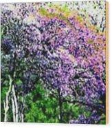 Paradise Hills Wood Print