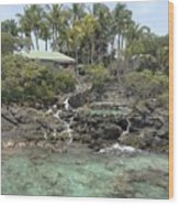 Paradise In Coki Wood Print