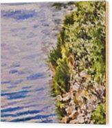 Paradise Lake Shore Wood Print
