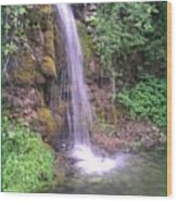 Waterfall In Spring Paradise Cove Winslow Illinois Wood Print
