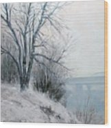 Paradise Point Bridge Winter Wood Print