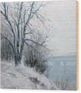 Paradise Point Bridge Winter Wood Print
