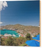 Paradise Point View Of Charlotte Amalie Saint Thomas Us Virgin Islands Wood Print by George Oze