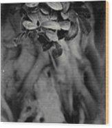 Parallel Botany #5175 Wood Print