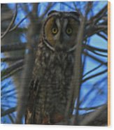 Parallel Leanings - A Hooter Study Wood Print