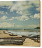 Paraty Beach, So. America Wood Print