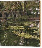 Parc Du Champ De Mars Wood Print