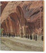 Paria River In Paria Canyon-vermillion Cliffs Wilderness Wood Print
