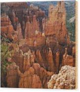 Paria View Wood Print