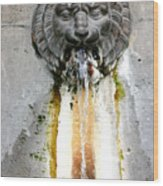 Paris - Waterfountain Wood Print