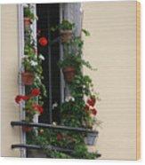 Paris - Window 2 Wood Print