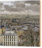 Paris As Seen From The Sacre-coeur Wood Print