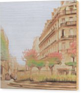 Paris, City Of Lovers Wood Print