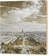 Paris City View 20 Sepia Wood Print