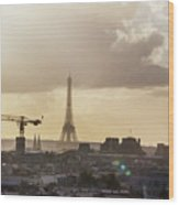 Paris City View 30  Wood Print