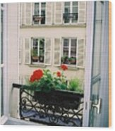 Paris Day Windowbox Wood Print