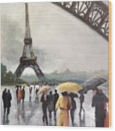 Paris Fog Wood Print