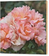 Paris Garden Roses Wood Print