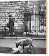 Paris Old Woman And Dog Wood Print