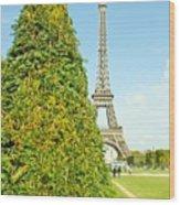 Paris Towers Wood Print