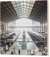 Paris Train Station Wood Print