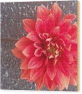 Parisian Flower Wood Print