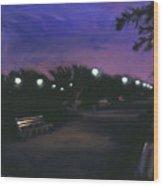 Park At Dusk Wood Print