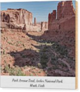 Park Avenue Trail, Arches National Park, Moab, Utah Wood Print