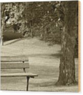 Park Bench In A Park Wood Print