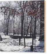 Park In The Snow Wood Print